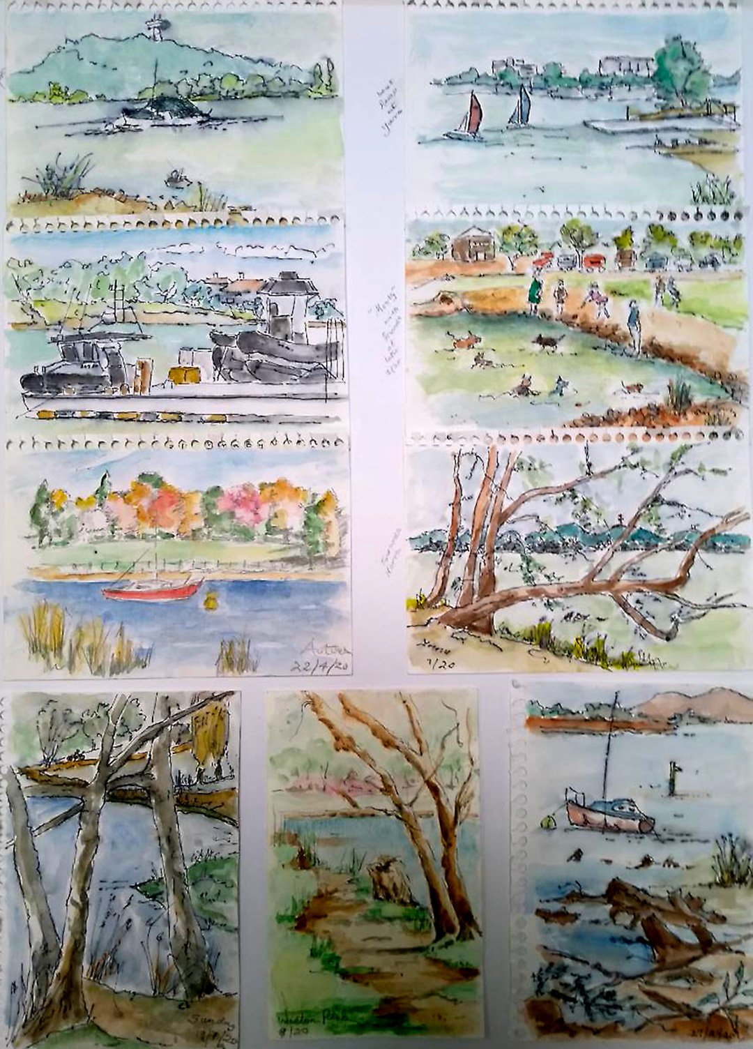 Jill Mail | 2021 | Lake Burley Griffin selected sketches on COVID walks | Watercolour pen on paper | 64x51cm